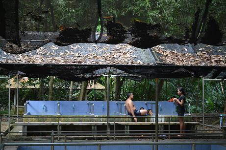 Минеральные ванны в Таиланде