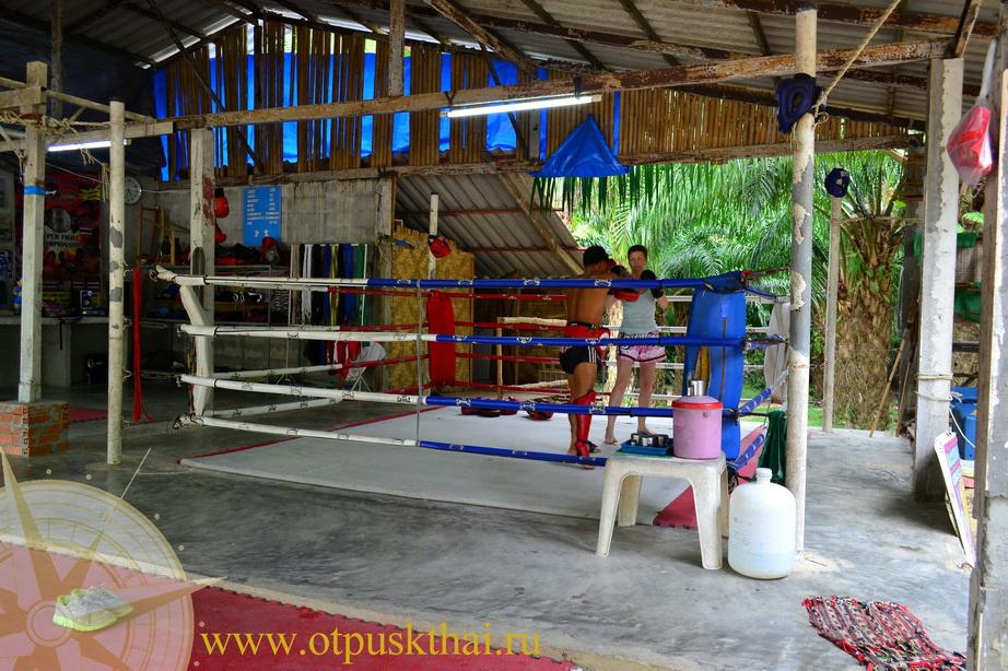muay thai провинция краби